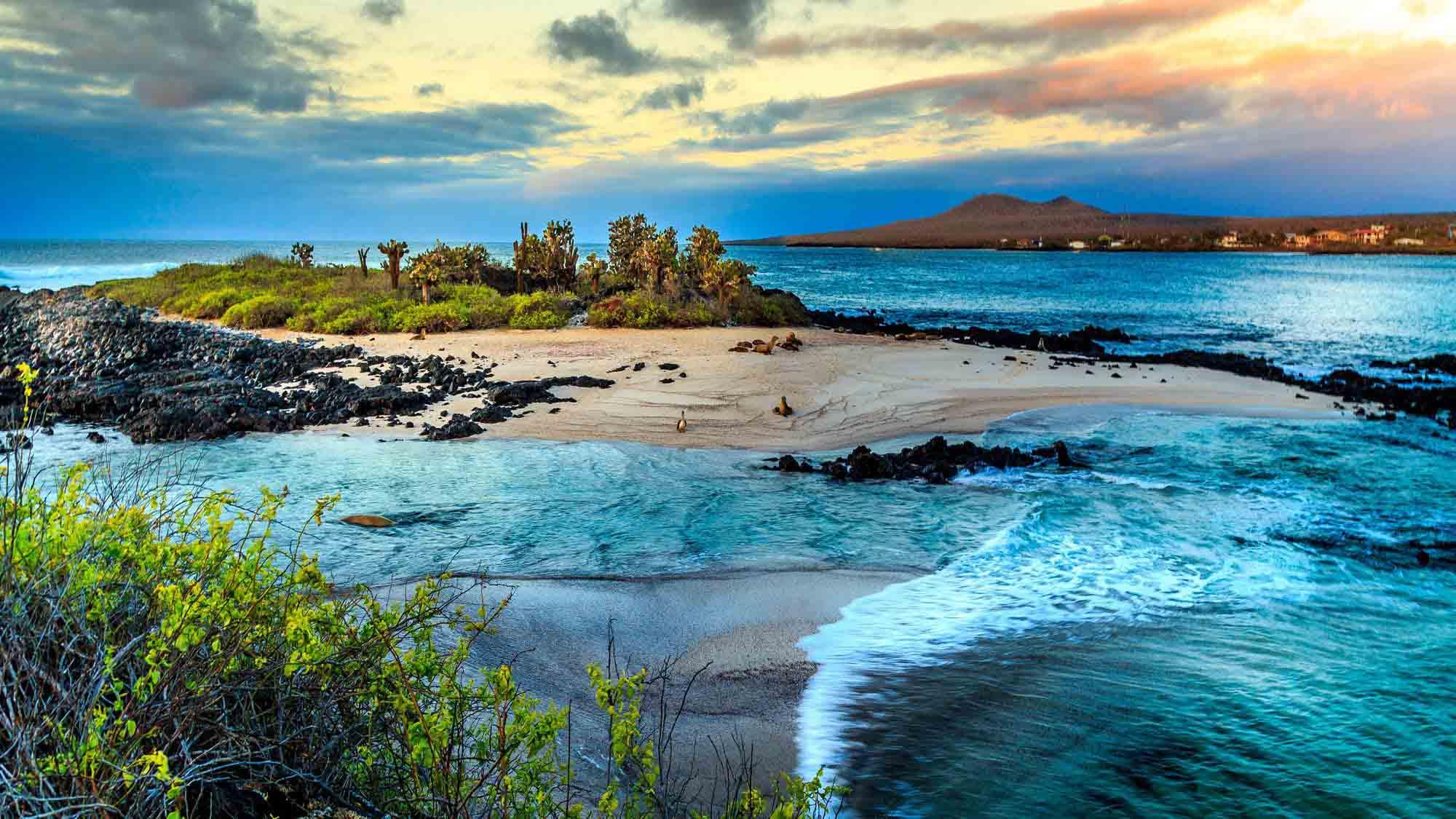 Galapagos-Islands-artis